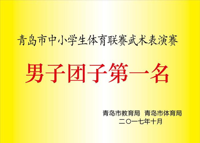 明珠国学:青岛市中小学武术表演团体第一名