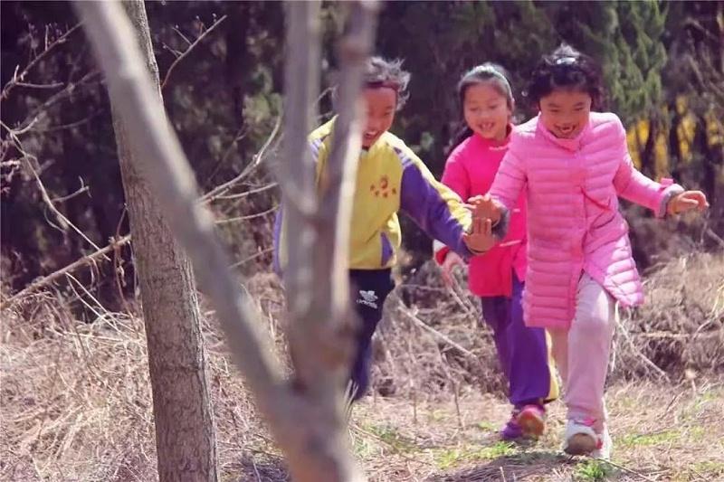 明珠国学自然教育