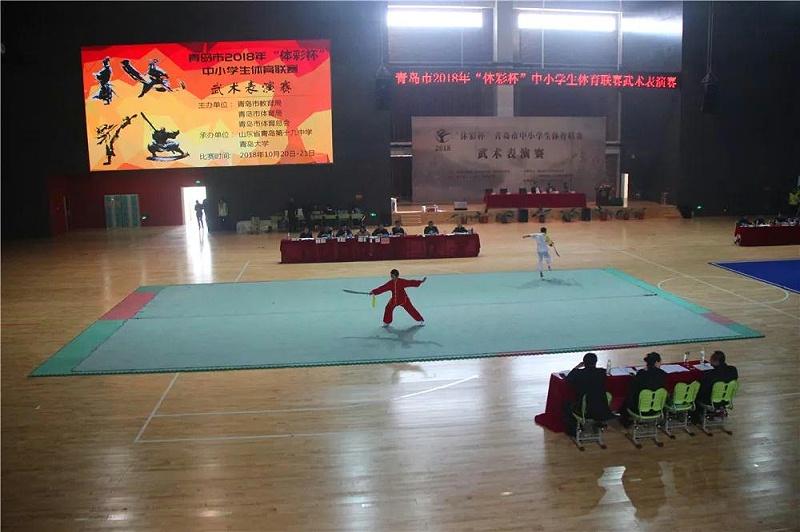 明珠国学学子武术表演赛-4