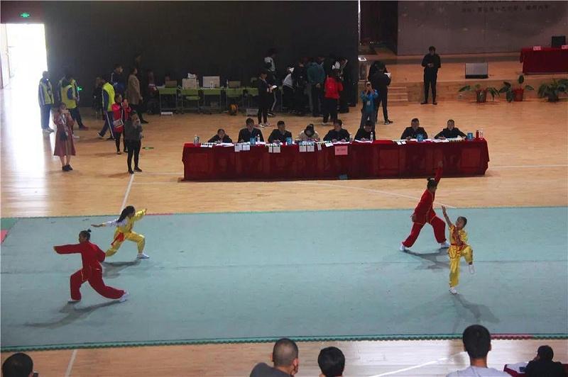 明珠国学学子武术表演赛-5