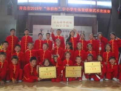 青岛明珠国学在2018青岛市第二届中小学生武术表演赛中取得优异成绩
