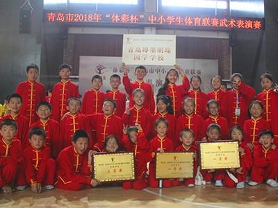 明珠国学-武术比赛获奖