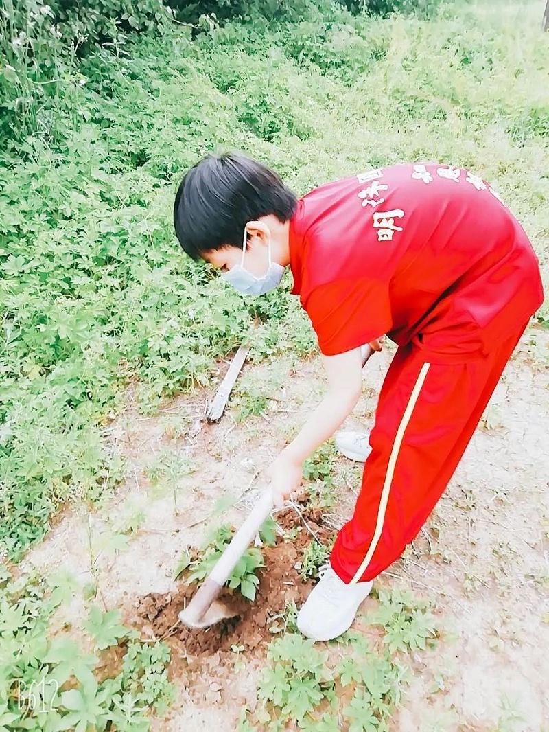 明珠国学农耕